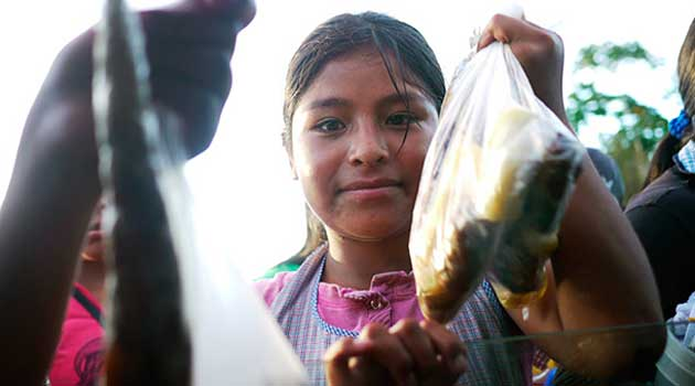 Children sell fried fish and plantains to highway drivers
