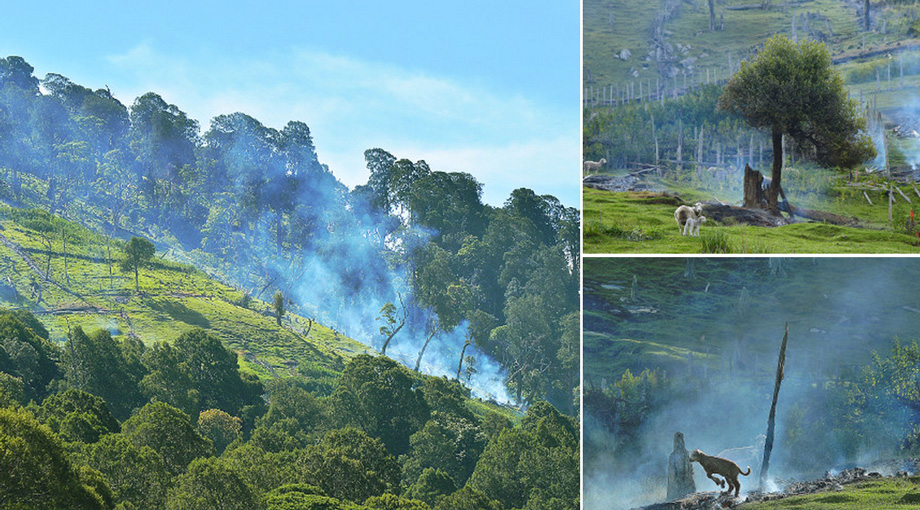 Smoke rises from a homestead destroyed by fire in western Kenya's Cherangani Hills