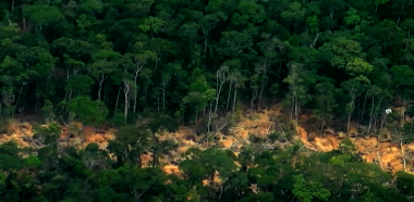 An illegal tungsten mine in Puinawai National Park, Colombia